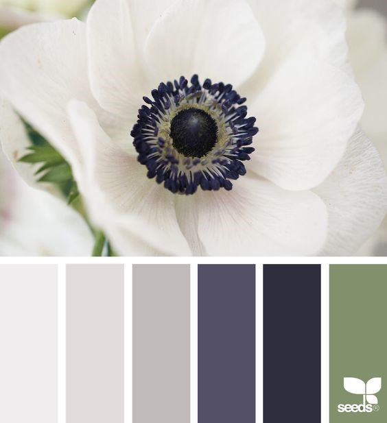 Набор цветов для дизайна интерьера условной кухни