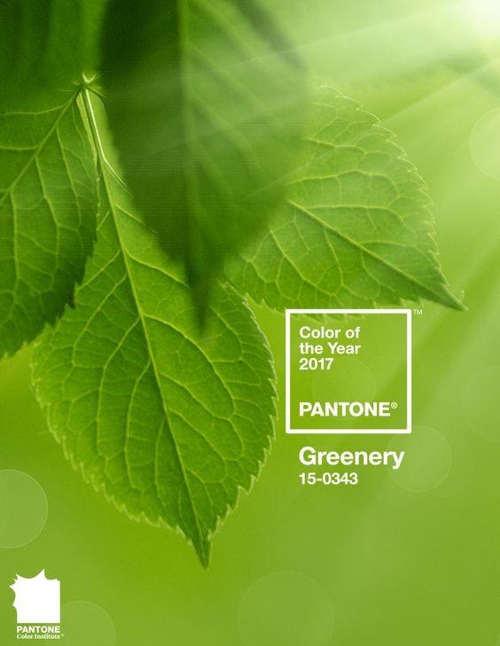 Цвет 2017 года от Пантон - Greenery 15-3043