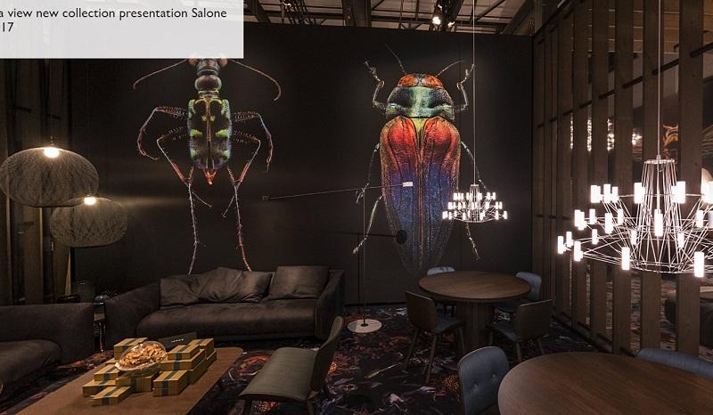 Фотообои с жуками