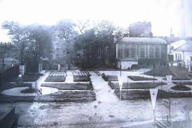 Дореволюционная фотография сада перед особняком
